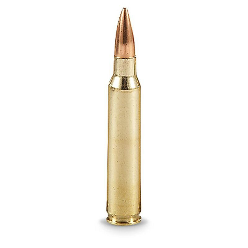 50 Rounds of American Quality .223 Remington Ammunition 50 Rounds FMJ 55 Grain Winchester Brass