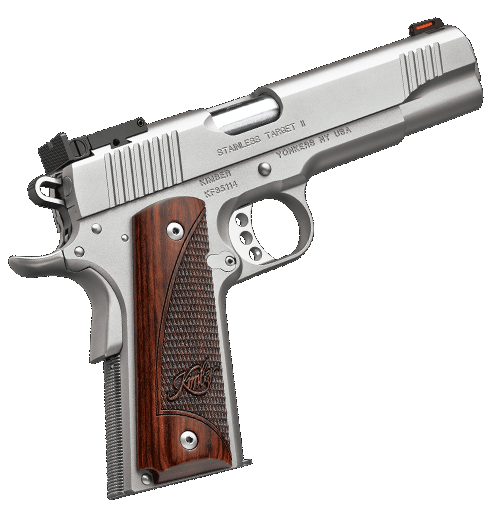 Stainless Target II